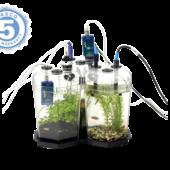 246_nabor-ekosistema